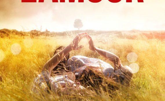 """Affiche du film """"L'histoire de l'amour"""""""